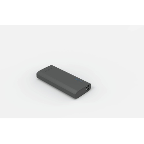 Image of   PowerBank 12500mAh 2USB-A 21A grå gummi